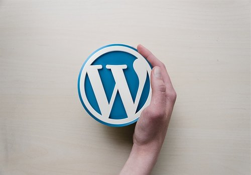 Why Choose WordPress for SEO